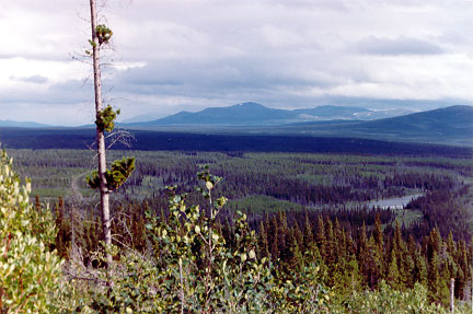 Southern Yukon Backcountry
